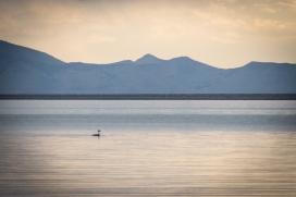 The Great Salt Lake, Utah © Kyler Michaelson