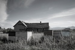 Chesterfield, Idaho old house with beehives