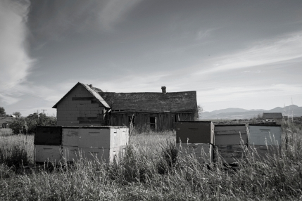 Old house with beehives in Chesterfield, Idaho