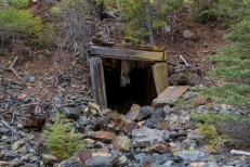 This is an abandoned mineshaft in Lemhi County, Idaho