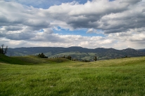 This meadow was a ways off the main road. We hoped to catch a heard of elk moseying through, but instead got this awe inspiring vista