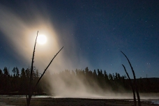 The steam from a geyser backlit by the full moon and milkyway framed by dead trees that grew too close to this geothermal hot spot.