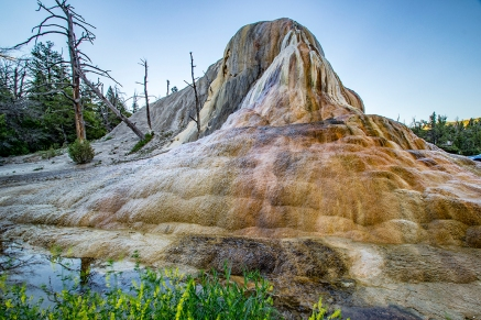This awesome feature was glistening in the sunset above Mammoth Springs