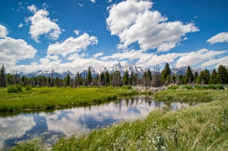 The wind chopped up my mirror, but this beaver dam below the Grand Tetons was awesome